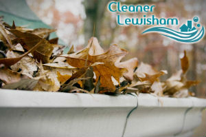 gutter-cleaners-lewisham